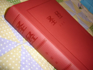 Chinese Burgundy Bible /  With Cross on the Spine / Book Introductions