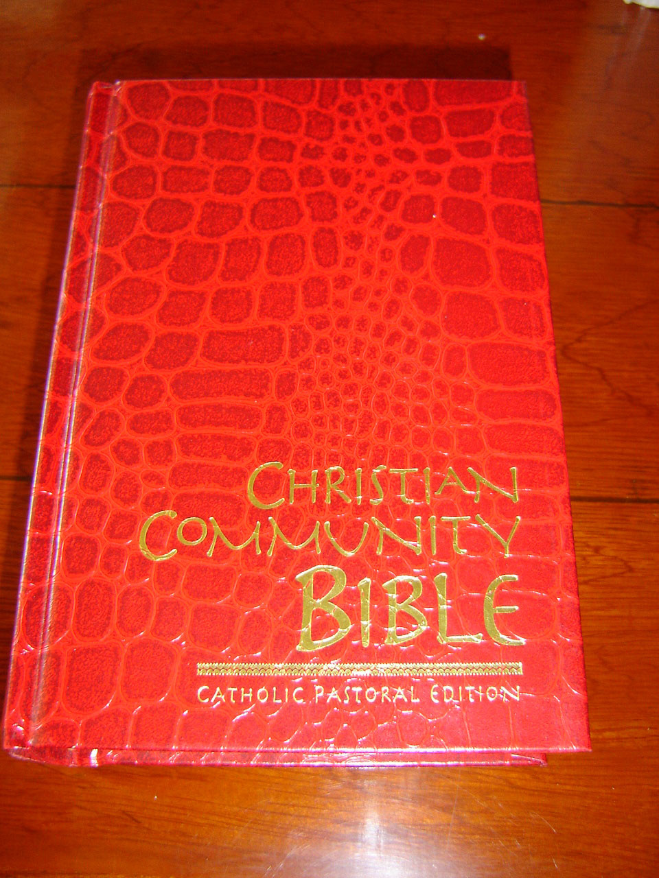 Christian Community Bible RED / Catholic Pastoral Edition Claretian 52  Edition