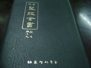 Unique Korean Bible with Easy Mixed Script KOREAN and CHINESE Characters Mixed in this Bible