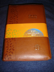 BROWN Leather Bound MODERN CHINESE - ENGLISH Bilingual Holy Bible / Golden Edges CNV - ESV