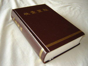 CHINESE Language Edition Christian Community Bible - Catholic Pastoral Edition