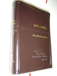 Vietnamese Language Holy Bible - Revised Version / Kinh Thanh Ban Truyen Thong Hieu Dinh / Imitation Leather Cover