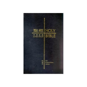 English Chinese Bible (Traditional) Union. NIV Leather [Leather Bound]
