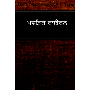 Punjabi Bible-FL-Easy to Read (Punjabi Edition) [Paperback]