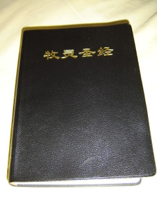 Chinese Catholic Community Bible / Study Bible / Color Maps, and Chinese Catholic Art Photos in the Bible