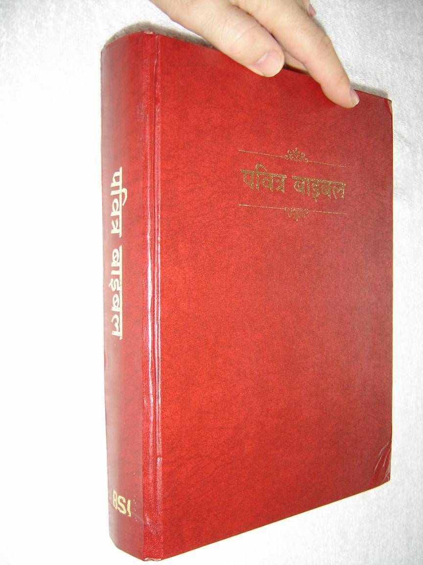 Large Print Hindi Language Holy Bible, Old Version Re-Edited (LT) /  Y10HIND071 Red Hardcover with Red Edges