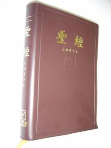 Taiwanese Mandarin (Chinese) Bible, Brown Vinyl / Taiwanese Han Character Edition / 聖經 台語漢字本