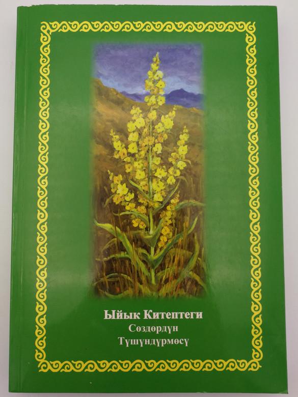 Kyrgyz language Bible Dictionary by Haus Frederik / Hardcover 2014 / Фридрик Хаус - (9789967456389)