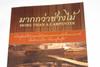 More Than a Carpenter Thai Language Edition by Josh McDowell / มากกว่าช่างไม้