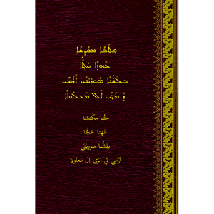 Ma'luli Language New Testament With Parallel Aramaic Text / Ma'loula a Town in Syria / Western Neo-Aramaic Suryon / considered to be the closest modern dialect to the ancient language of Jesus