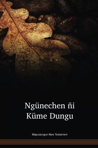 Mapudungun Language New Testament / Ngünechen ñi Küme Dungu (ARNNT) / Chile, Aregentina
