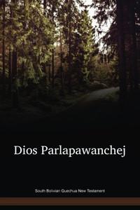 South Bolivian Quechua New Testament / Dios Parlapawanchej (QUHNT) / Bolivia
