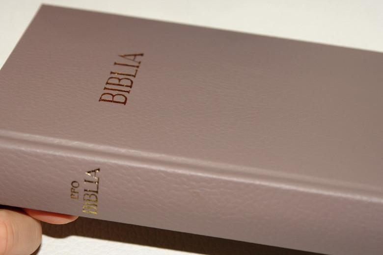 Light Brown Hungarian Bible / MAGYAR BIBLIA: Egyszerű fordítás (EFO) / Keményborító világosbarna műbőr kötés / Imitation Leather Hardcover / Modern Hungarian Language Easy to Read