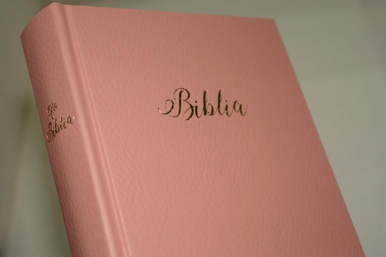 Pink Hungarian Bible / MAGYAR BIBLIA: Egyszerű fordítás (EFO) / Keményborító rózsaszín műbőr kötés / Imitation Leather Hardcover / Modern Hungarian Language Easy to Read