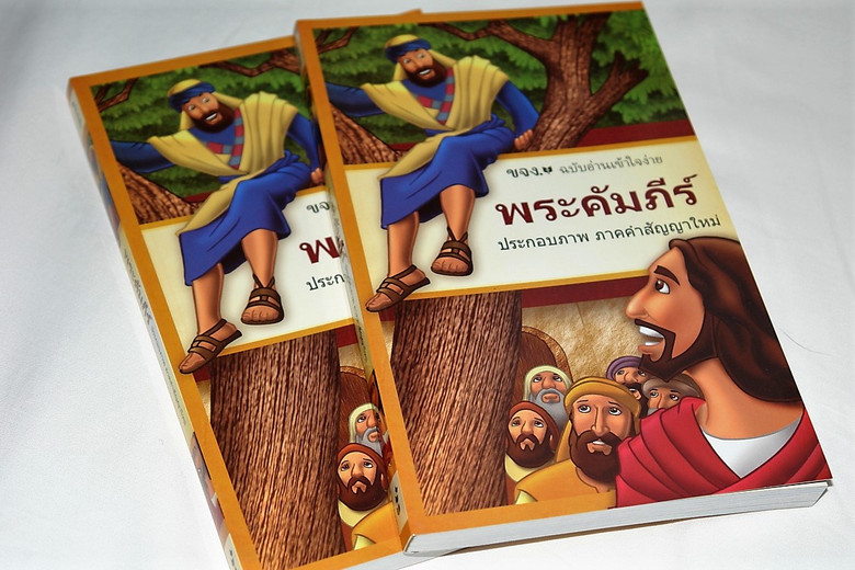 Thai New Testament / Easy to Read Modern Thai Language or Today's Thai Version / Full of Illustrations / N-THA-64135 / Great for Outreach (9781628264135)