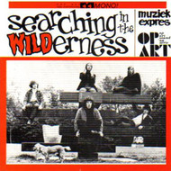 SEARCHING IN THE WILDERNESS (CD)