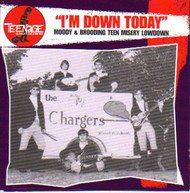 TEENAGE SHUTDOWN VOL. 6: I'M DOWN TODAY (CD)