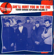 TEENAGE SHUTDOWN VOL. 8: SHE'LL HURT YOU IN THE END (CD)