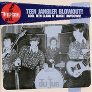 TEENAGE SHUTDOWN VOL. 9: TEEN JANGLER BLOWOUT