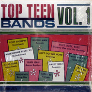 TOP TEEN BANDS VOL. 1