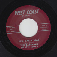FABULOUS SILVER TONES - HEY SALLY MAE