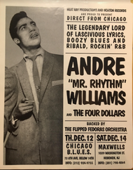 ANDRE WILLIAMS POSTER