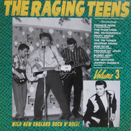 228 THE RAGING TEENS VOL. 3 LP (228)