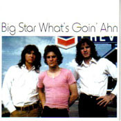 BIG STAR - WHAT'S GOIN' AHN (CD)