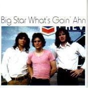 BIG STAR - WHAT'S GOIN' AHN (CD)