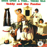 TEDDY AND THE PANDAS - ONCE UPON A TIME (CD)