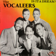 VOCALEERS - IS IT A DREAM?