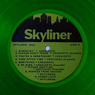 SKYLINERS - PRE-FLIGHT (Green vinyl)