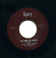 LITTLE WILLIE EGANS - YOU MUST BE FOOLIN