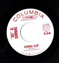 BIG AL DOWNING - GEORGIA SLOP