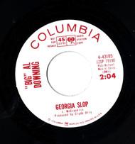 BIG AL DOWNING - GEORGIA SLOP