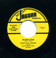 DOROTHEA FLEMING - THE DEVIL IS MAD