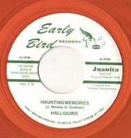 HALLIQUINS - HAUNTED MEMORIES