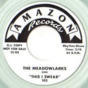 MEADOWLARKS - THIS I SWEAR