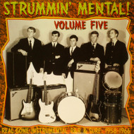 STRUMMIN' MENTAL VOL. 5 - LP