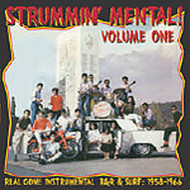 STRUMMIN' MENTAL VOL. 1 - LP