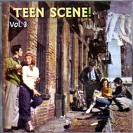 TEEN SCENE VOL. 3 (CD)