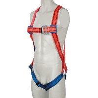 Silverline 1-Point Fall Arrest Harness