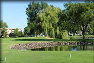 Emerald Greens Golf Club: 2-Some ($5 per player)