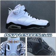 2010 Air Jordan 6 Motorsports 395866-101