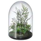 Artificial Terrarium Plants in Clear Plastic 15cm Dome - Home Interior Decor or Gift