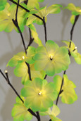 Frangipani Stem Bunch Lights