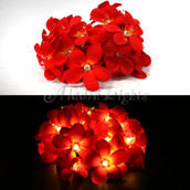 Red colour frangipani LED fairy lights