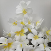 White yellow colour frangipani LED fairy lights
