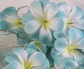 Tropical blue colour frangipani LED fairy lights