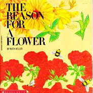 Reason for a Flower, The